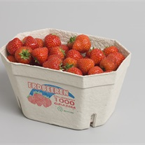 berries - pulp tray